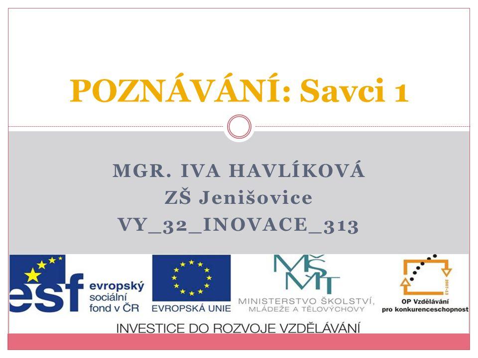 Mgr. Iva Havlíková ZŠ Jenišovice VY_32_INOVACE_313