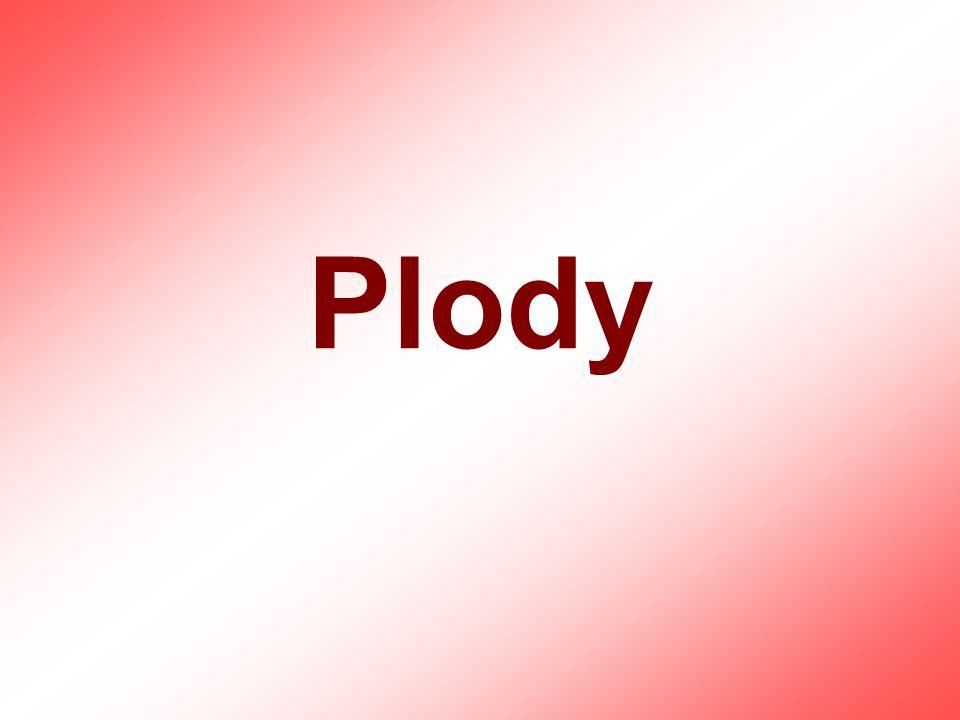 Plody