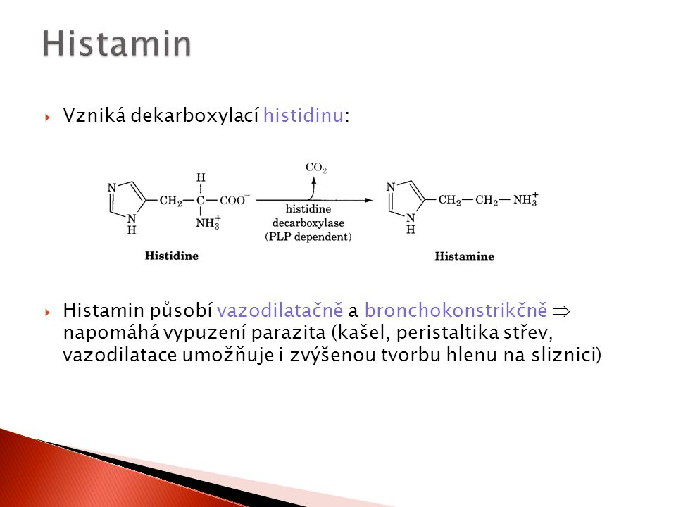 Histamin Vzniká dekarboxylací histidinu: