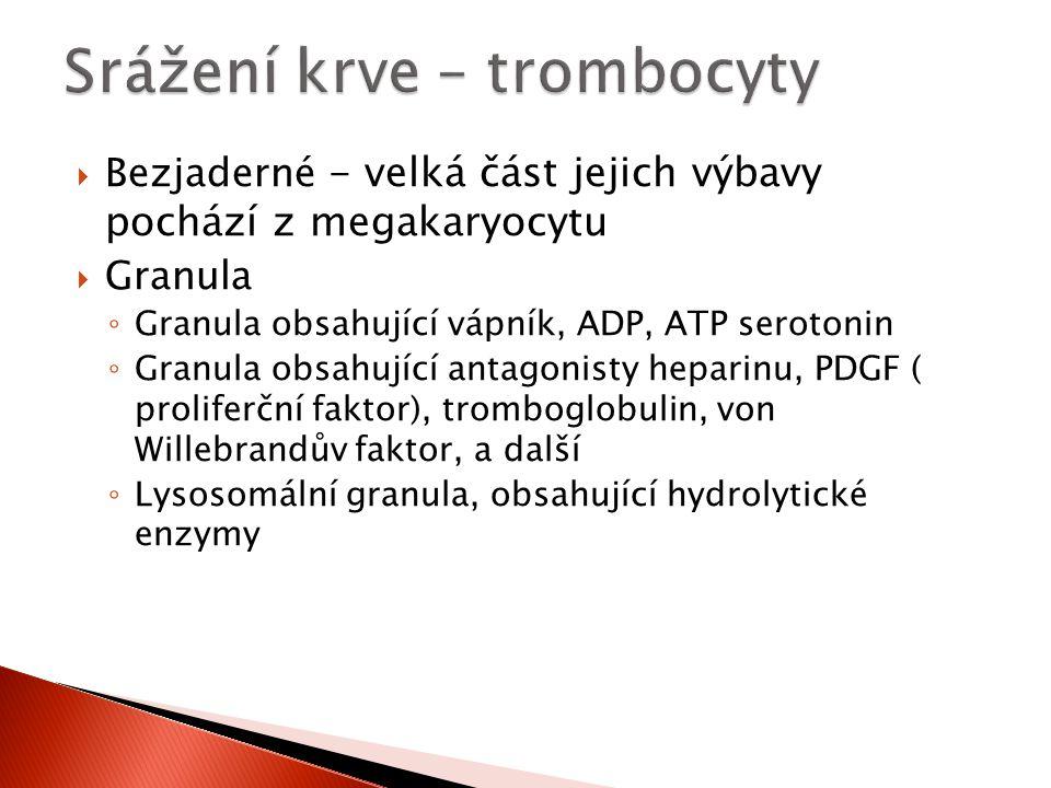 Srážení krve – trombocyty