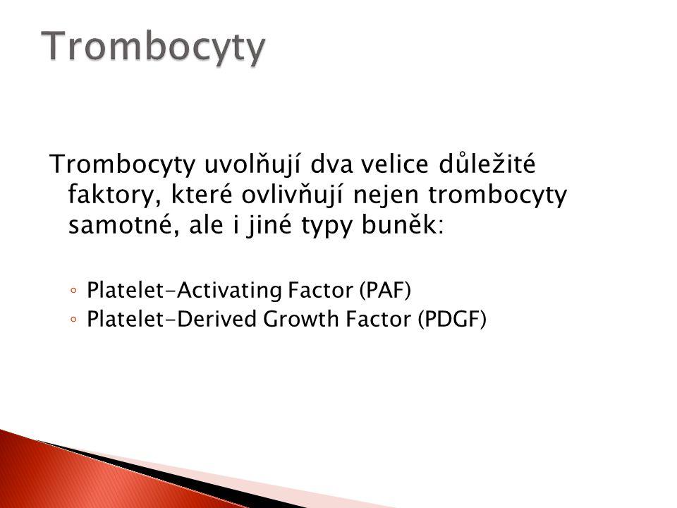 Trombocyty Trombocyty uvolňují dva velice důležité faktory, které ovlivňují nejen trombocyty samotné, ale i jiné typy buněk: