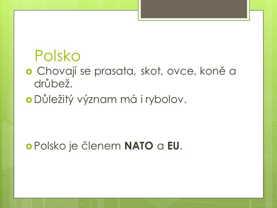 Polsko Chovají se prasata, skot, ovce, koně a drůbež.