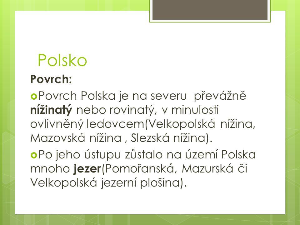 Polsko Povrch: