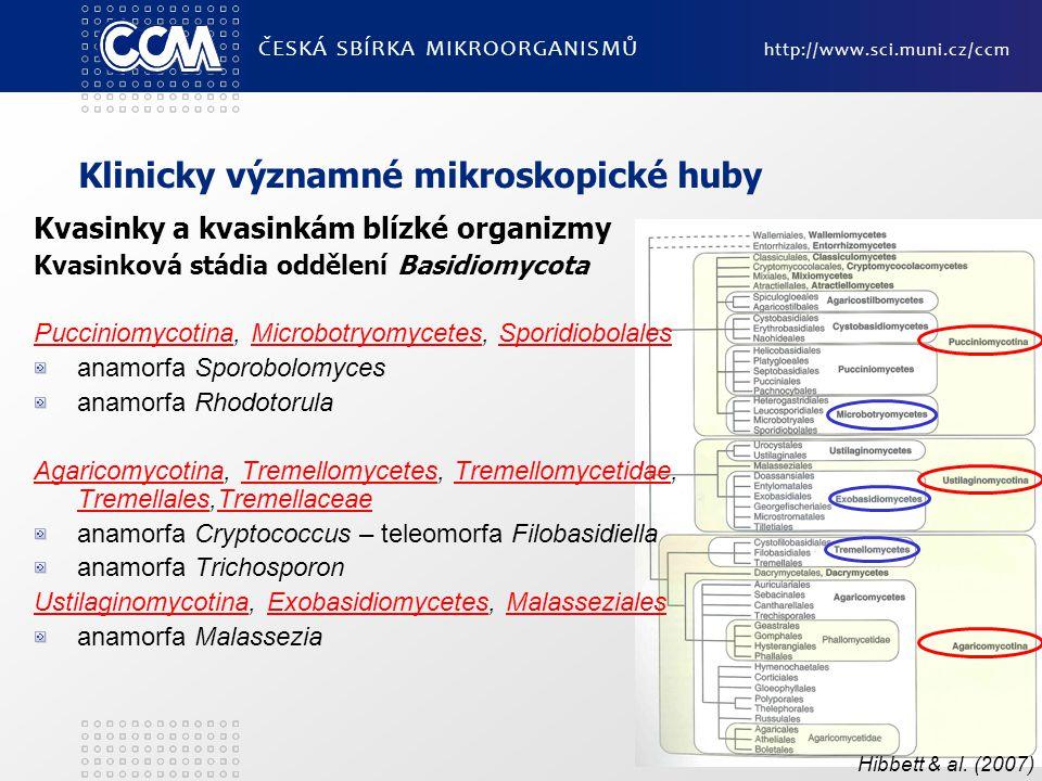 Klinicky významné mikroskopické huby