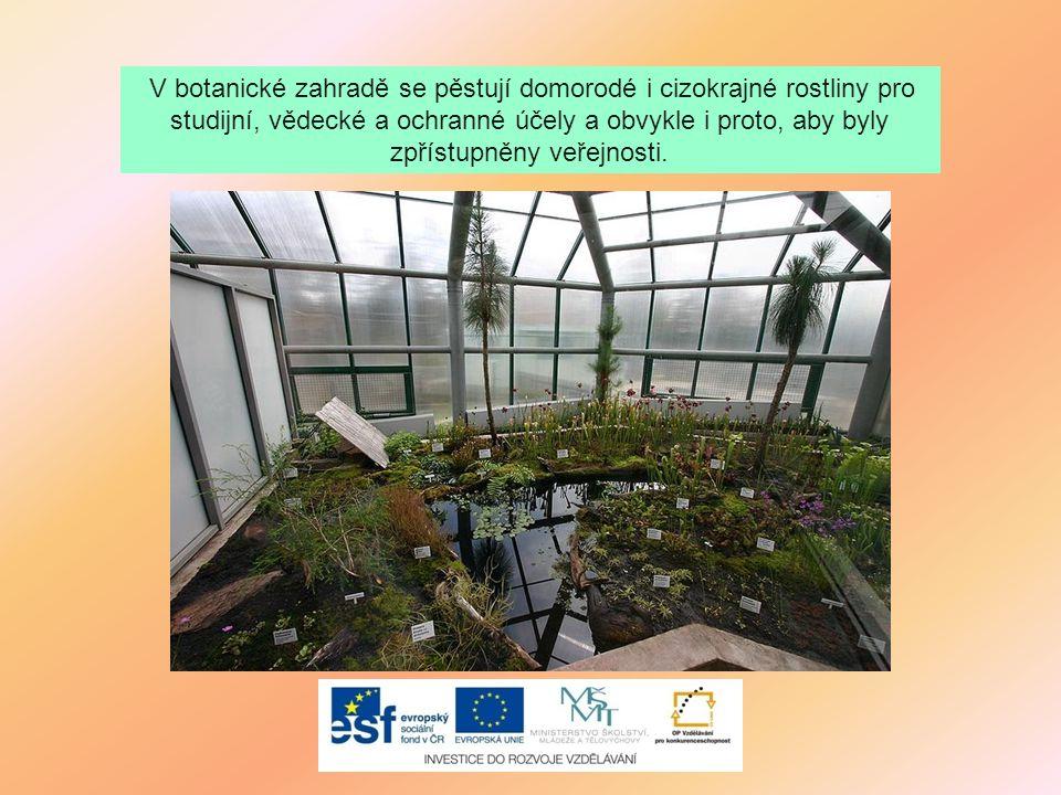 V botanické zahradě se pěstují domorodé i cizokrajné rostliny pro studijní, vědecké a ochranné účely a obvykle i proto, aby byly zpřístupněny veřejnosti.