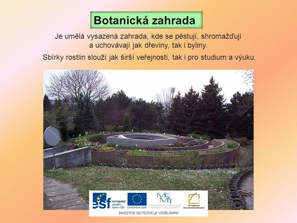 Botanická zahrada Je umělá vysazená zahrada, kde se pěstují, shromažďují. a uchovávají jak dřeviny, tak i byliny.