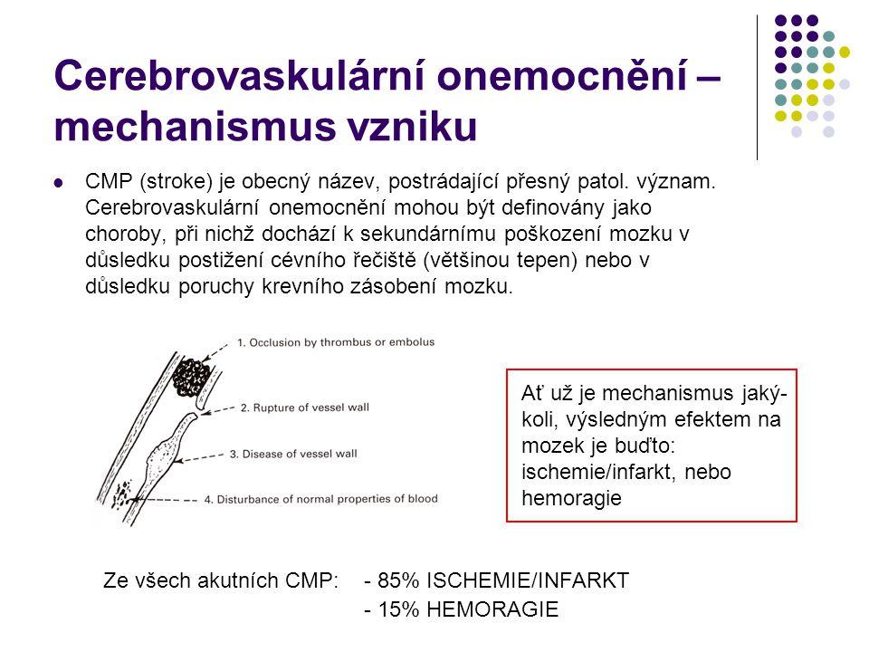 Cerebrovaskulární onemocnění – mechanismus vzniku