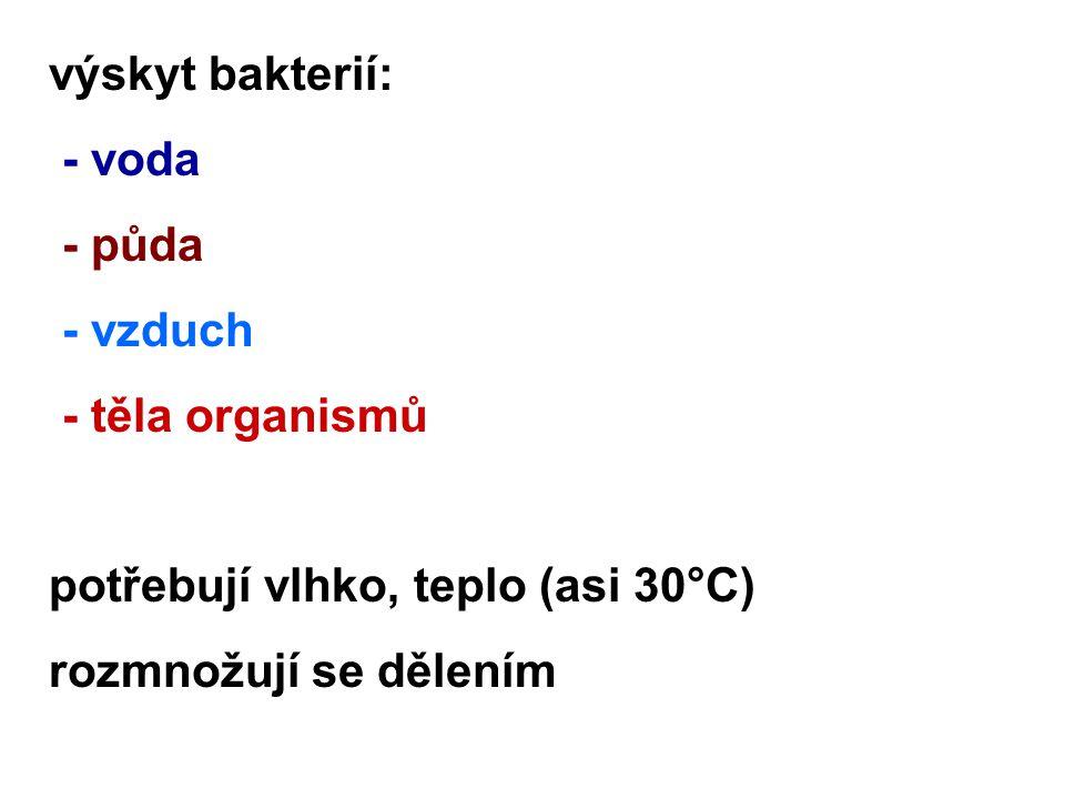výskyt bakterií: - voda. - půda. - vzduch. - těla organismů.