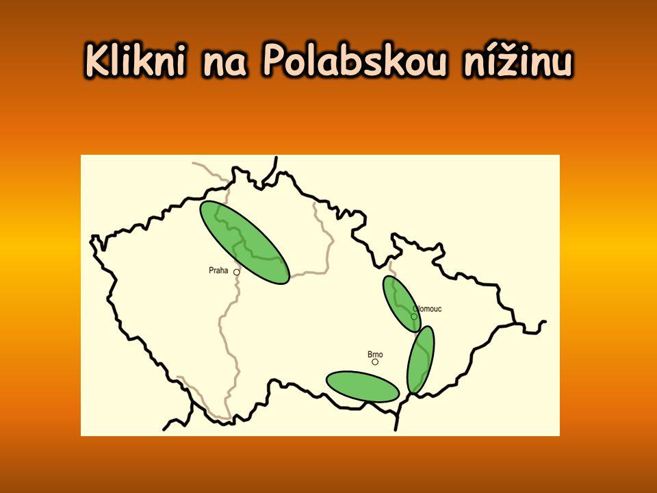 Klikni na Polabskou nížinu