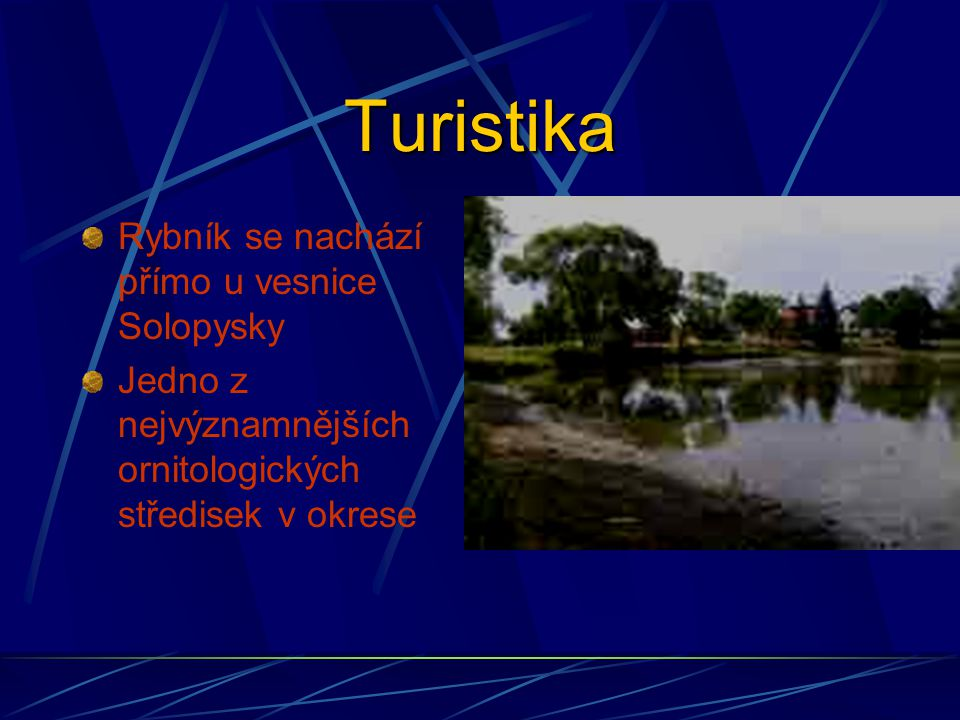 Turistika Rybník se nachází přímo u vesnice Solopysky