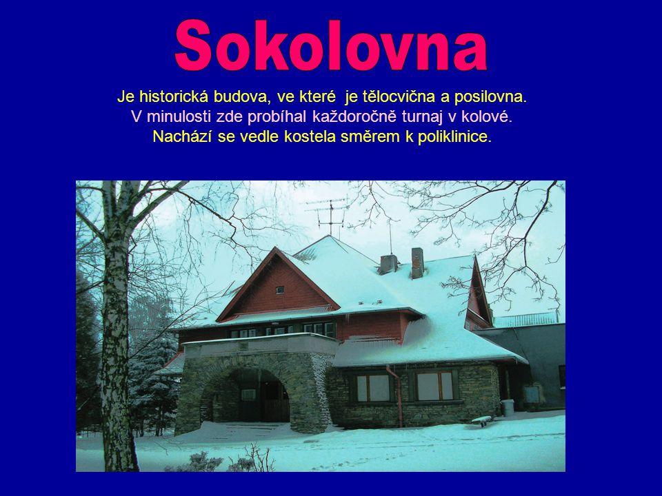 Sokolovna Je historická budova, ve které je tělocvična a posilovna.