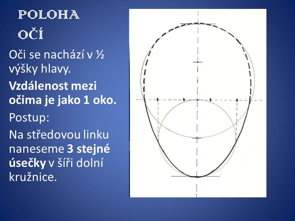 POLOHA OČÍ Oči se nachází v ½ výšky hlavy.