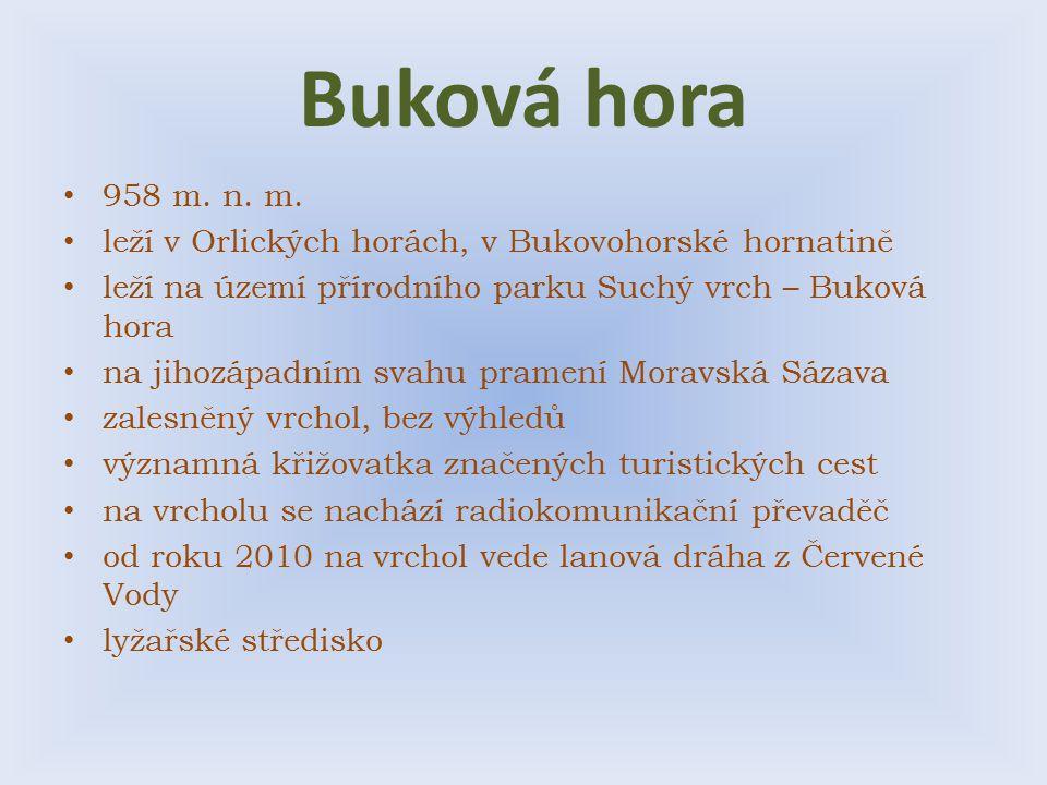 Buková hora 958 m. n. m. leží v Orlických horách, v Bukovohorské hornatině. leží na území přírodního parku Suchý vrch – Buková hora.