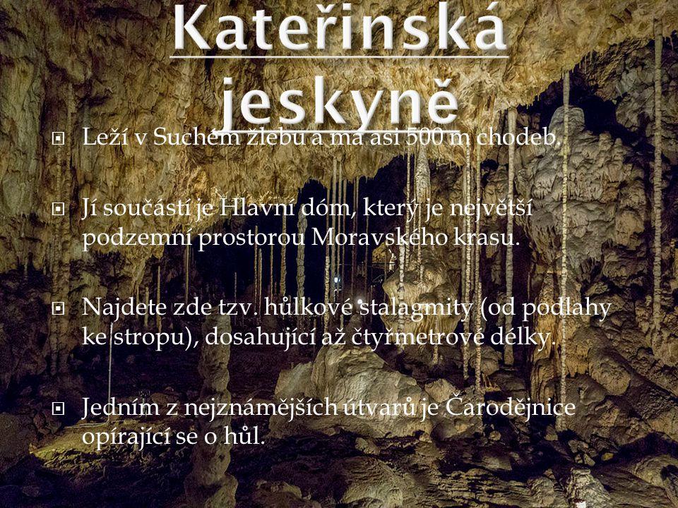Kateřinská jeskyně Leží v Suchém žlebu a má asi 500 m chodeb.