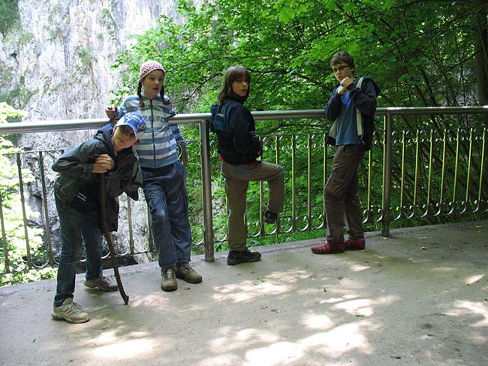 Macocha Hlavním turistickým cílem Moravského krasu bývá světoznámá propast Macocha. Je součástí Punkevních jeskyní.