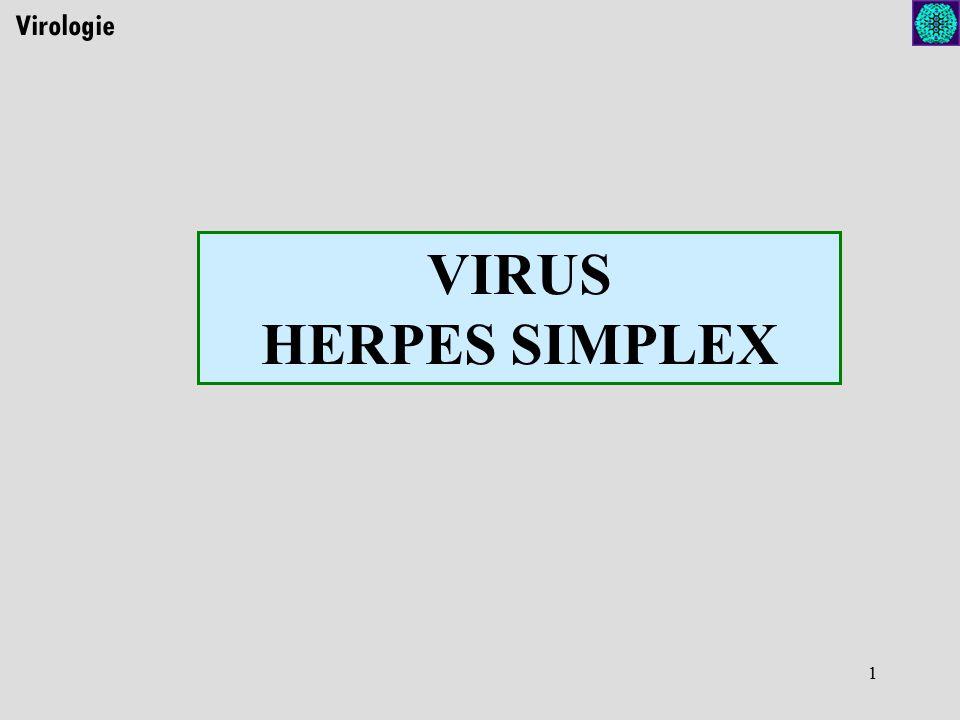 Virologie VIRUS HERPES SIMPLEX