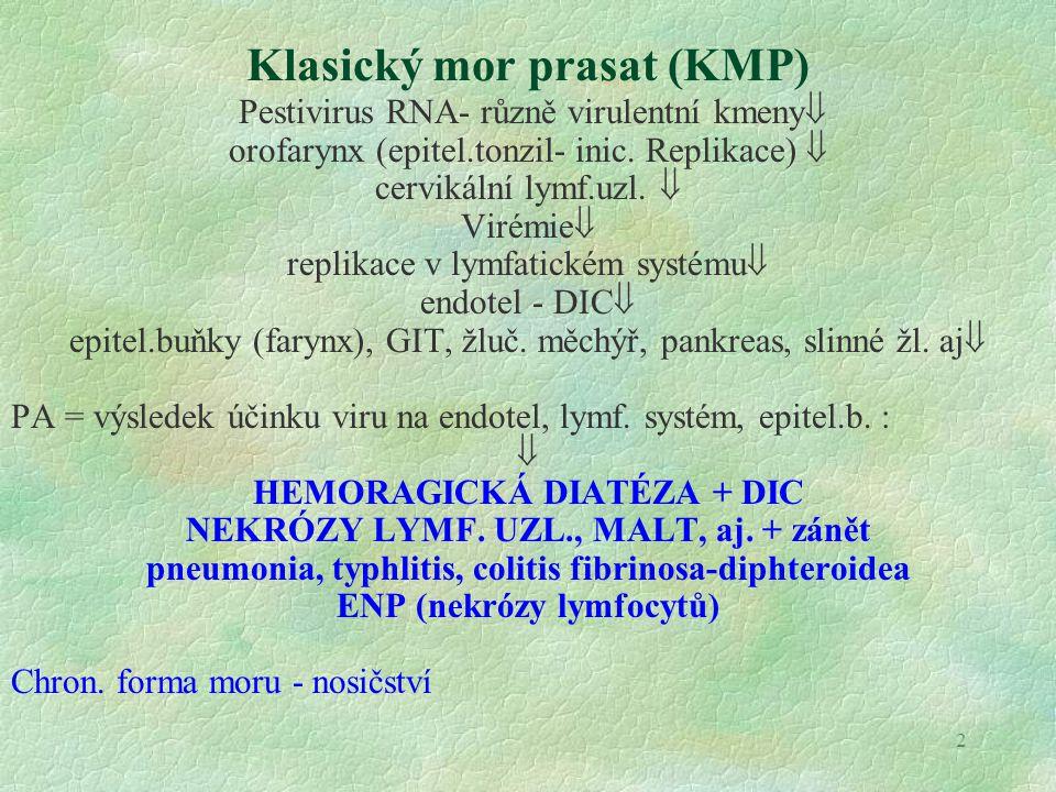 Klasický mor prasat (KMP)