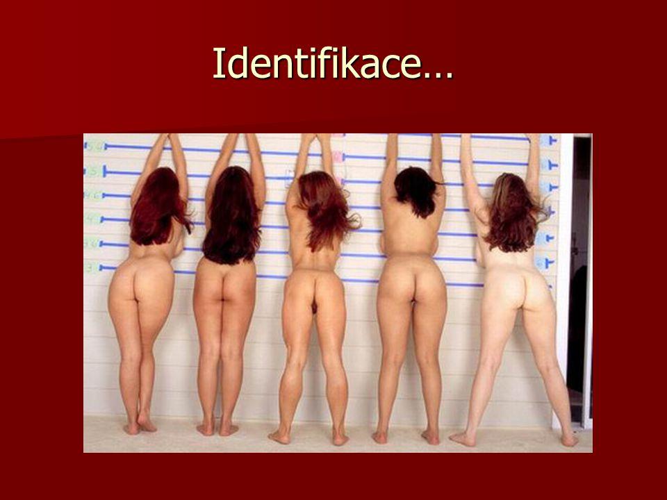 Identifikace…