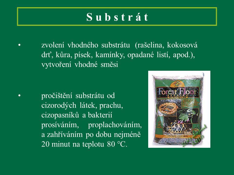 S u b s t r á t zvolení vhodného substrátu (rašelina, kokosová drť, kůra, písek, kamínky, opadané listí, apod.), vytvoření vhodné směsi.