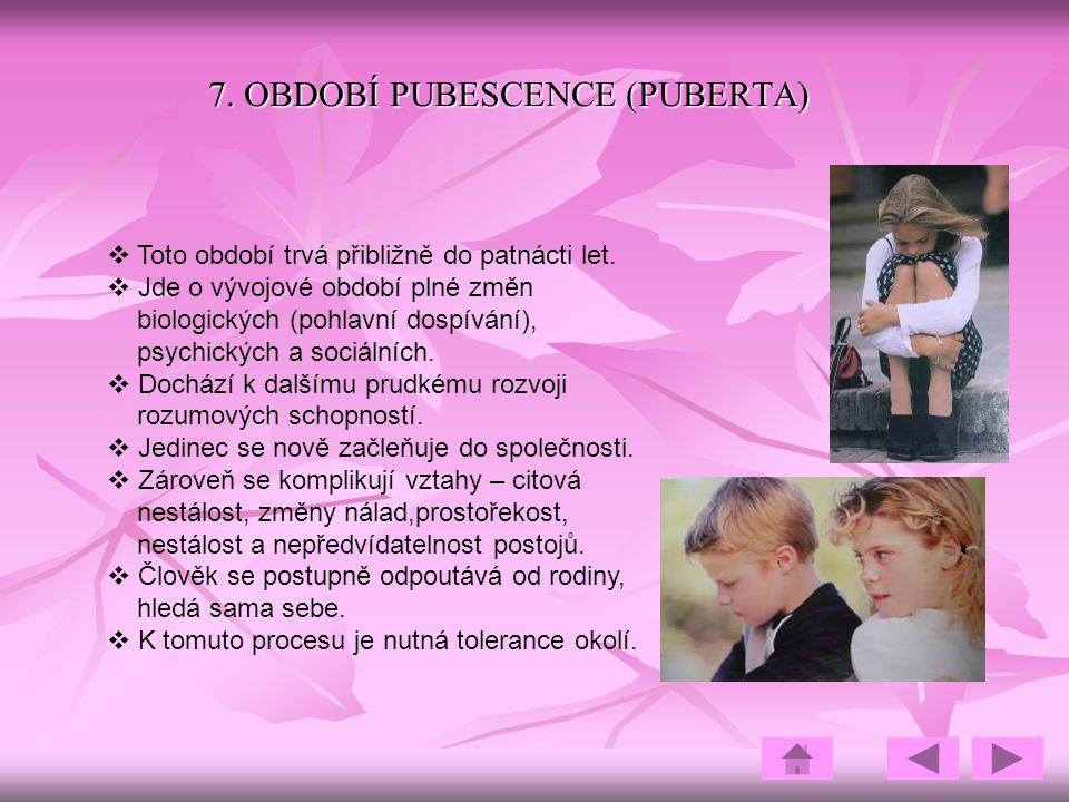 7. OBDOBÍ PUBESCENCE (PUBERTA)