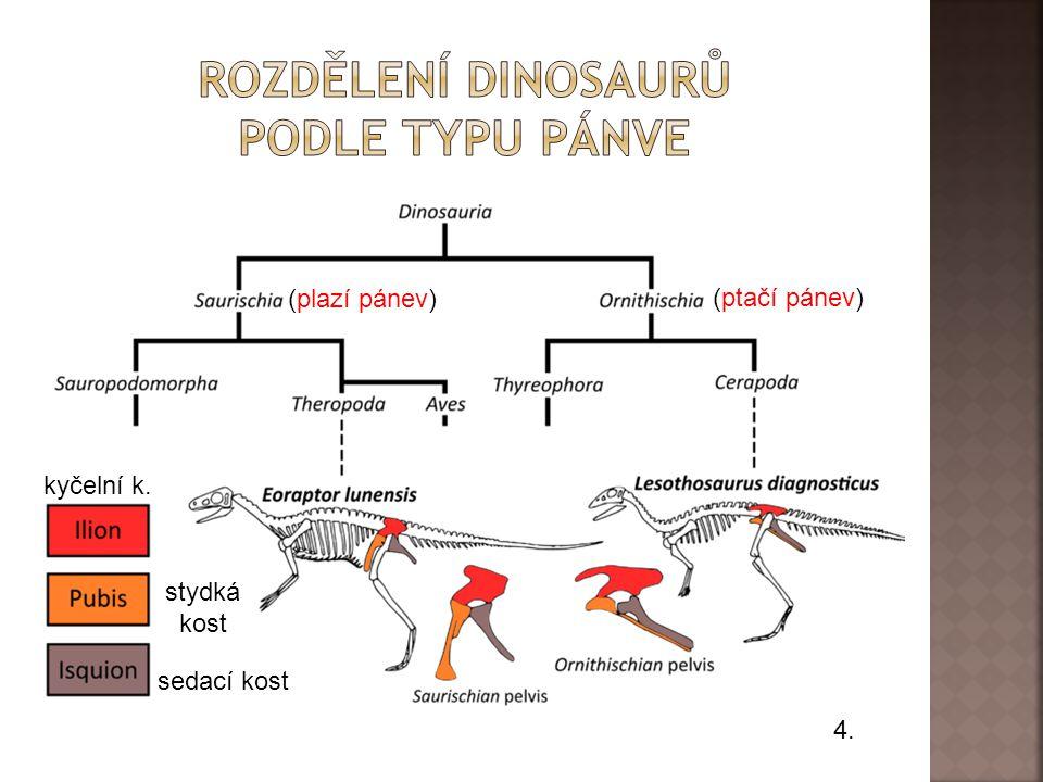 Rozdělení dinosaurů podle typu pánve