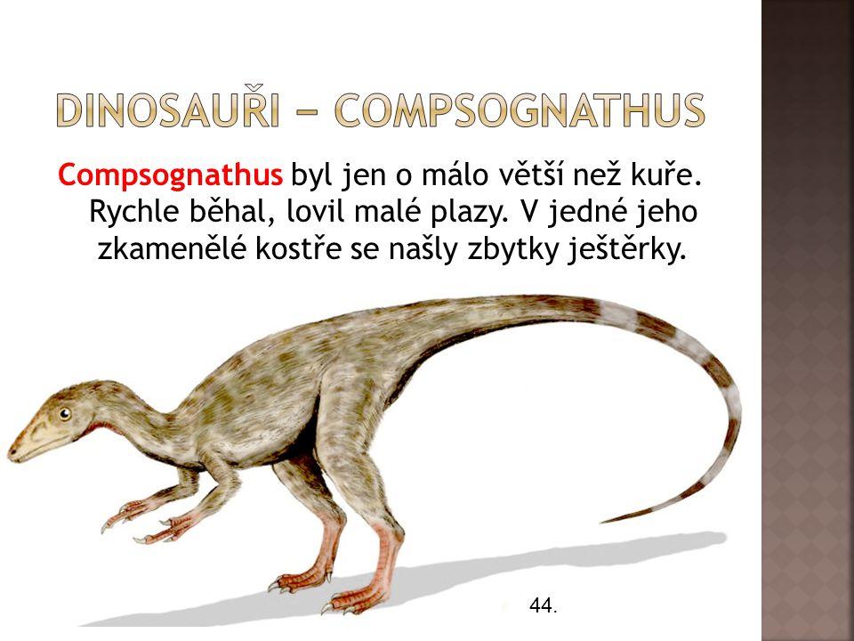 dInosauři − compsognathus