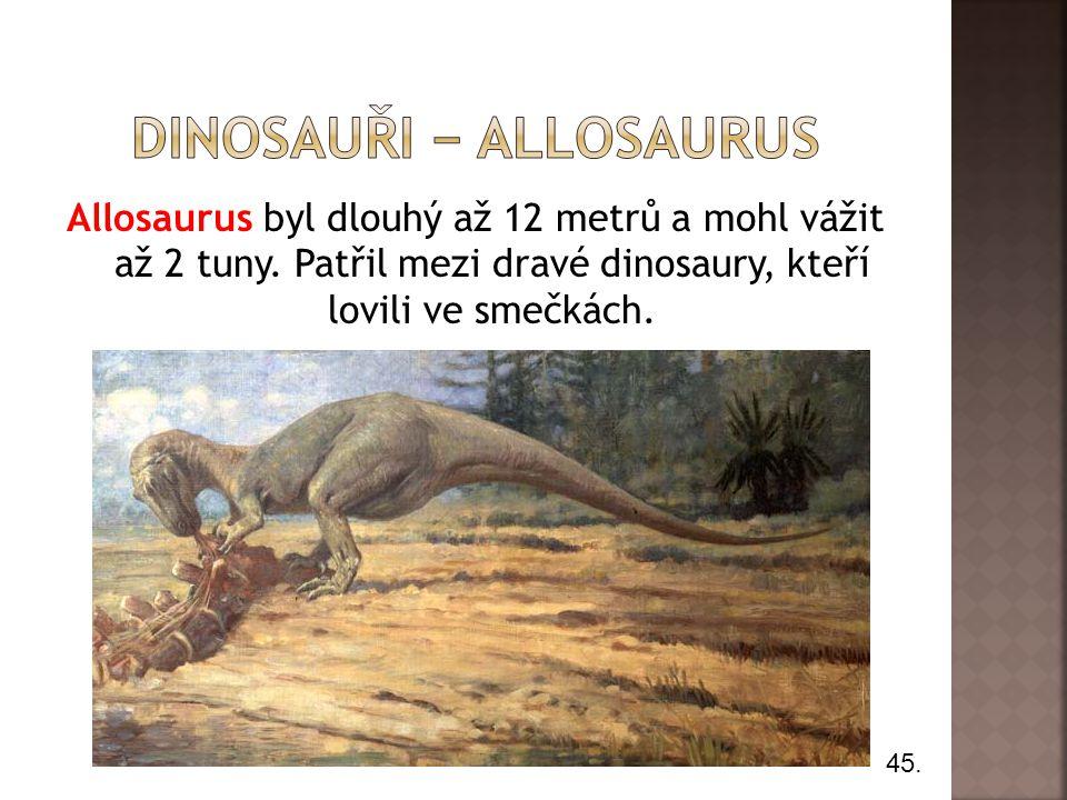 dInosauři − allosaurus