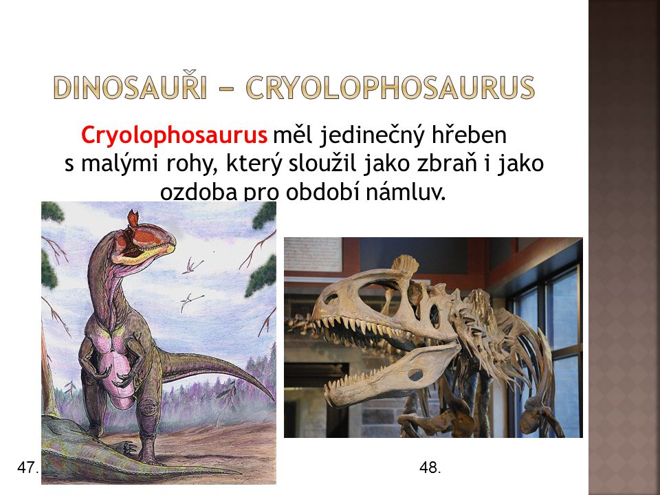 dInosauři − cryolophosaurus