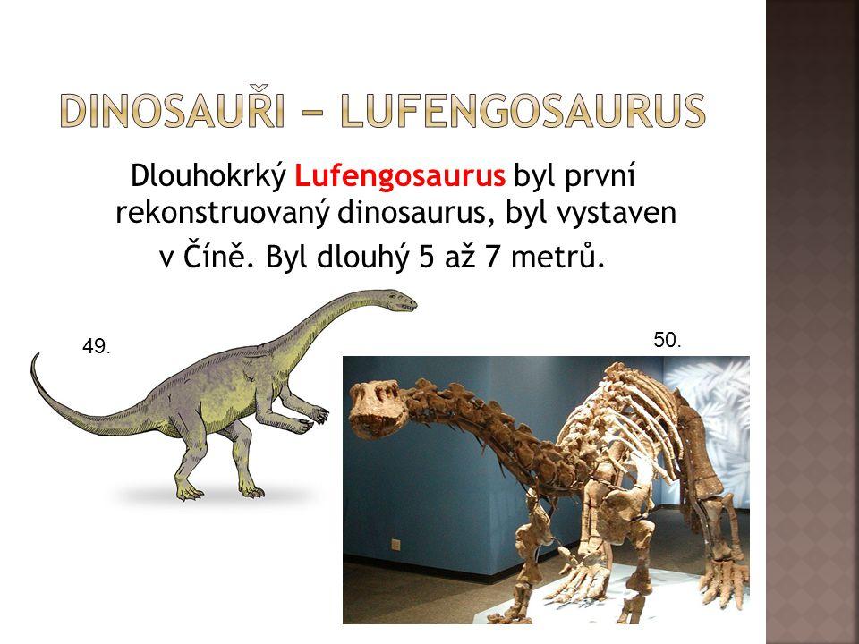 dInosauři − lufengosaurus