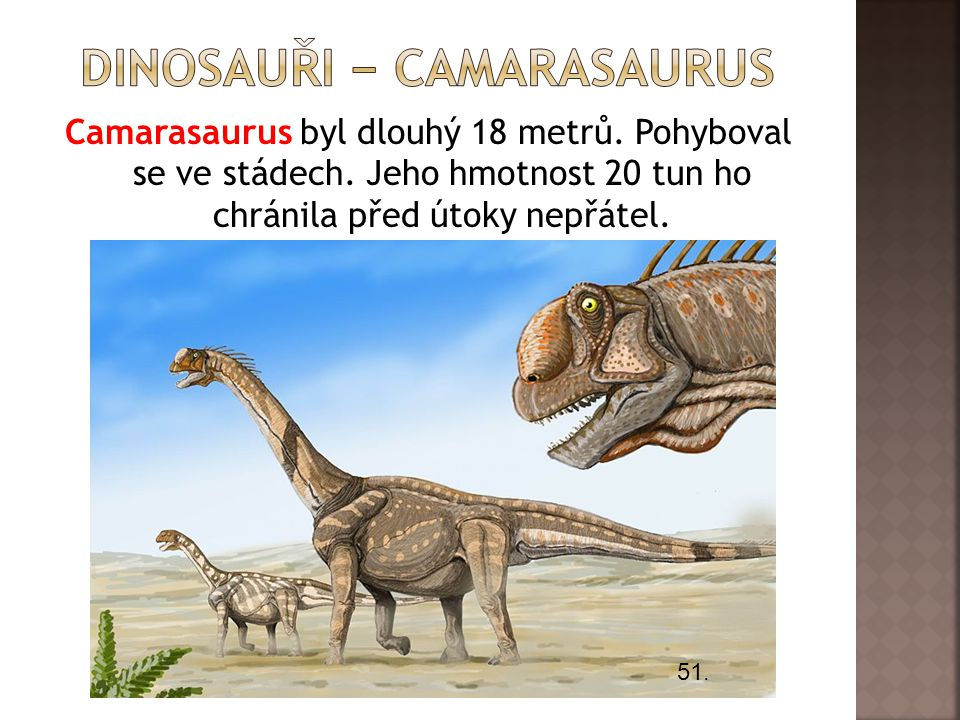 dInosauři − camarasaurus