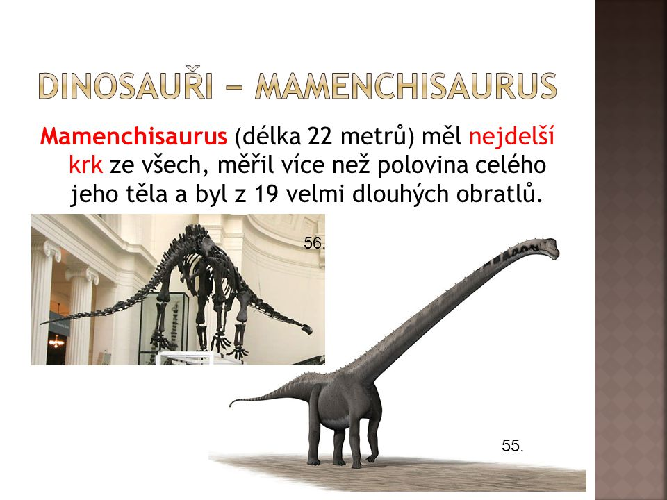dInosauři − mamenchisaurus