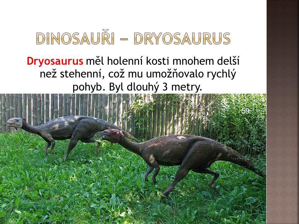 dInosauři − dryosaurus
