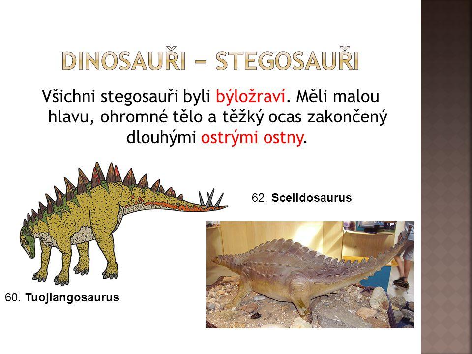 dInosauři − stegosauři
