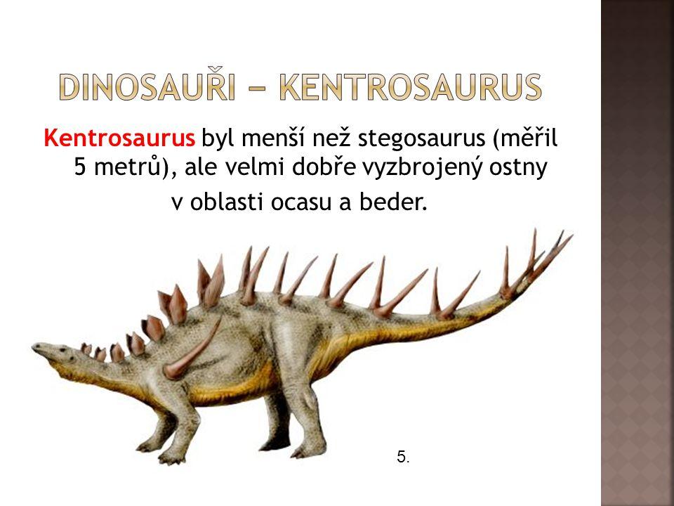 Dinosauři − kentrosaurus