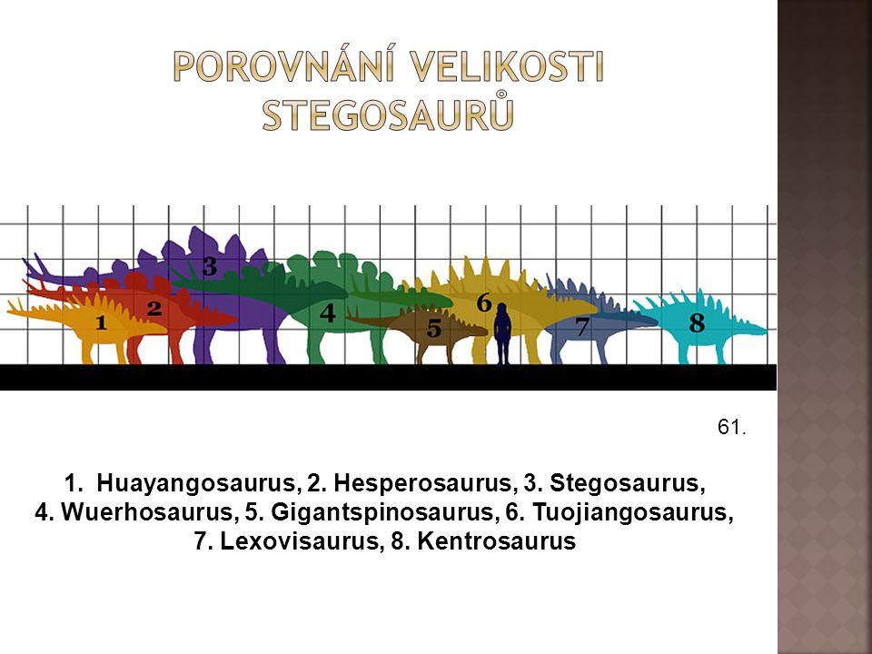 Porovnání velikosti stegosaurů