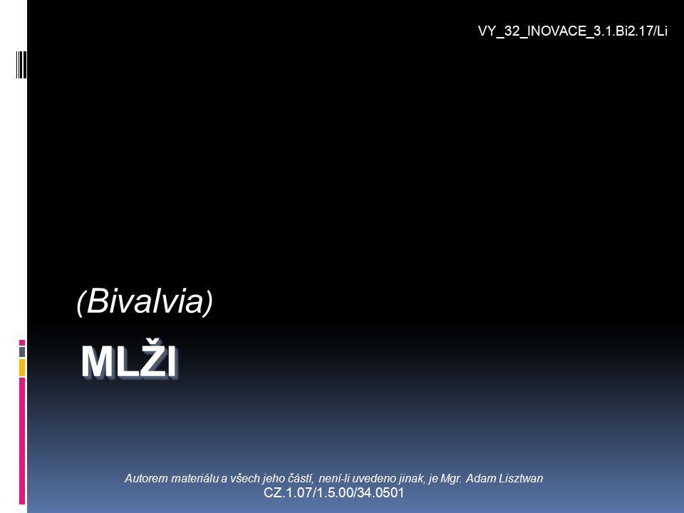 MLŽI (Bivalvia) VY_32_INOVACE_3.1.Bi2.17/Li