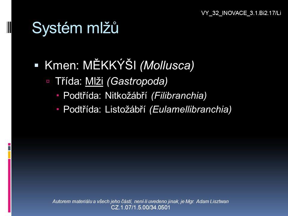 Systém mlžů Kmen: MĚKKÝŠI (Mollusca) Třída: Mlži (Gastropoda)