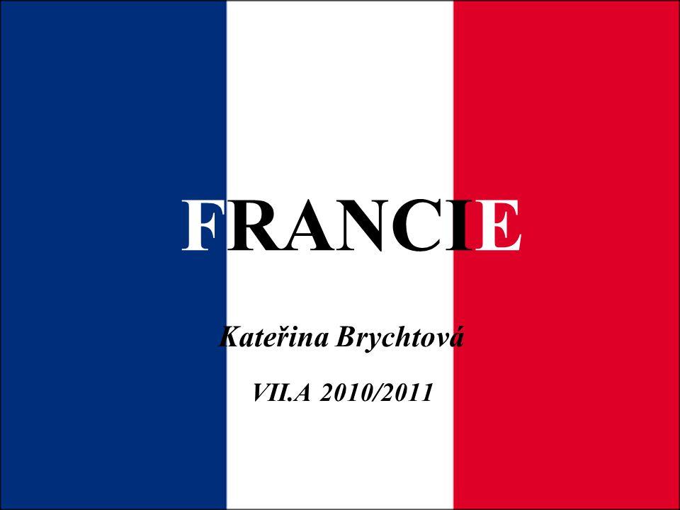 Kateřina Brychtová VII.A 2010/2011