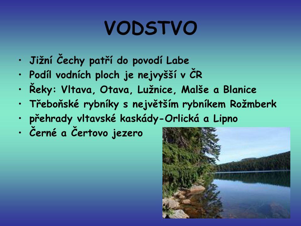 VODSTVO Jižní Čechy patří do povodí Labe