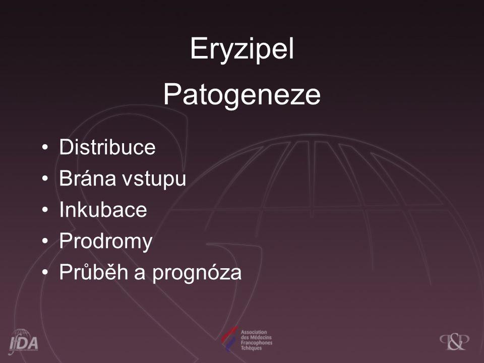 Eryzipel Patogeneze Distribuce Brána vstupu Inkubace Prodromy