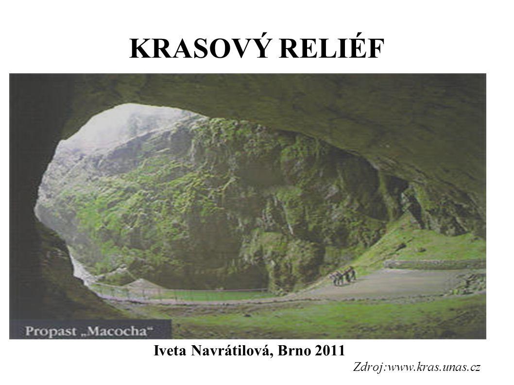 Iveta Navrátilová, Brno 2011 Zdroj:www.kras.unas.cz