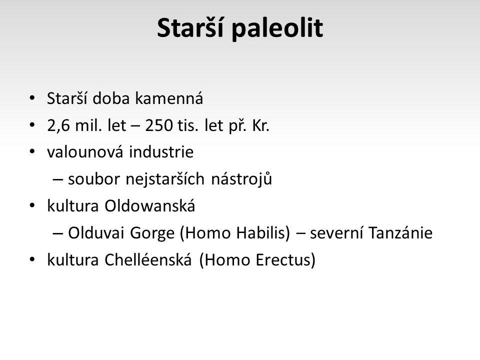 Starší paleolit Starší doba kamenná