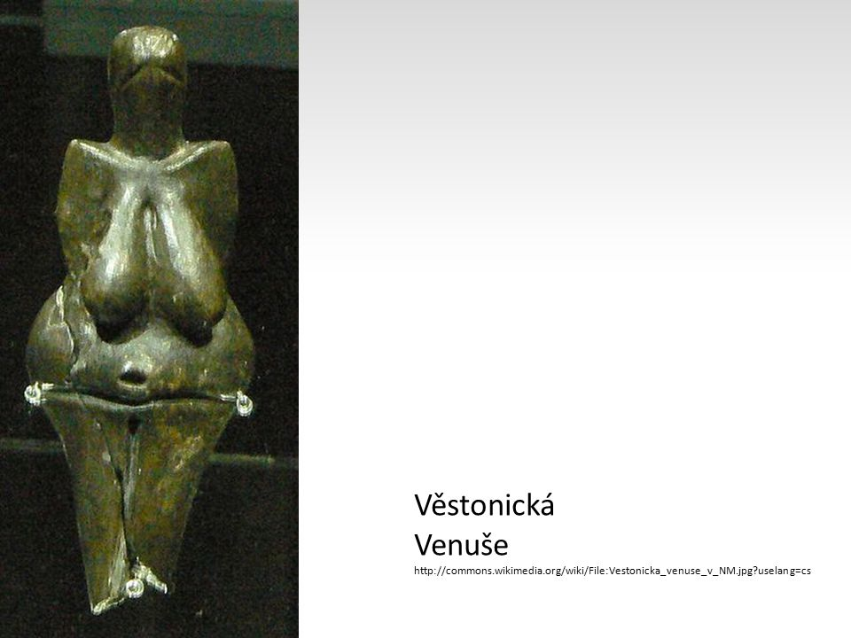 Věstonická Venuše http://commons.wikimedia.org/wiki/File:Vestonicka_venuse_v_NM.jpg?uselang=cs