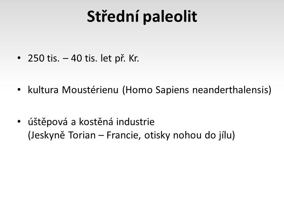 Střední paleolit 250 tis. – 40 tis. let př. Kr.