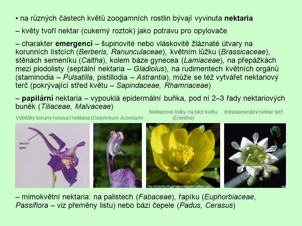 • na různých částech květů zoogamních rostlin bývají vyvinuta nektaria
