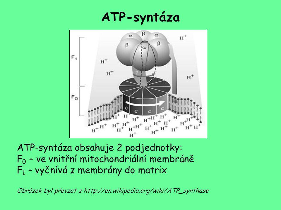 ATP-syntáza ATP-syntáza obsahuje 2 podjednotky: