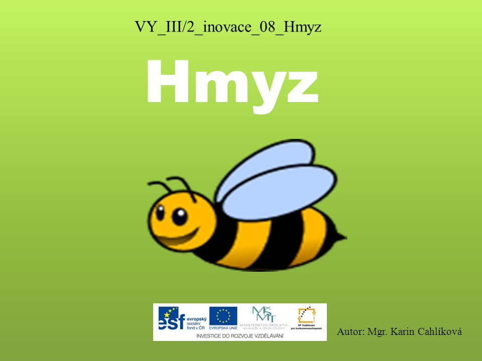 VY_III/2_inovace_08_Hmyz