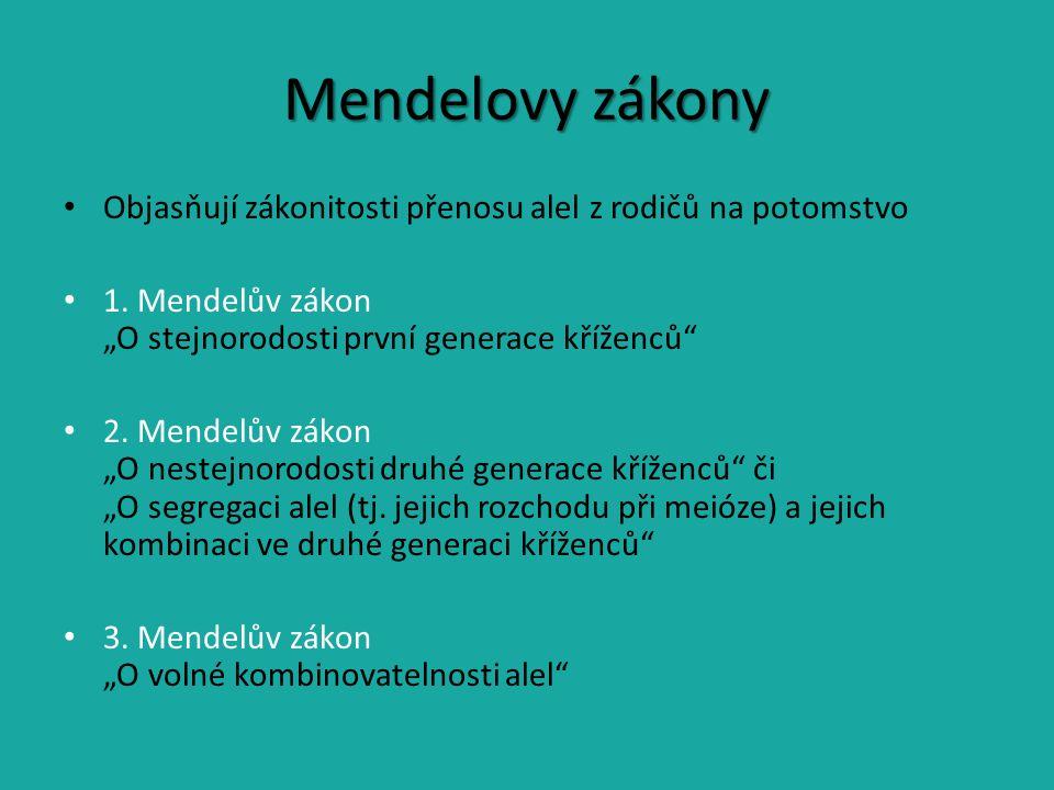 Mendelovy zákony Objasňují zákonitosti přenosu alel z rodičů na potomstvo.
