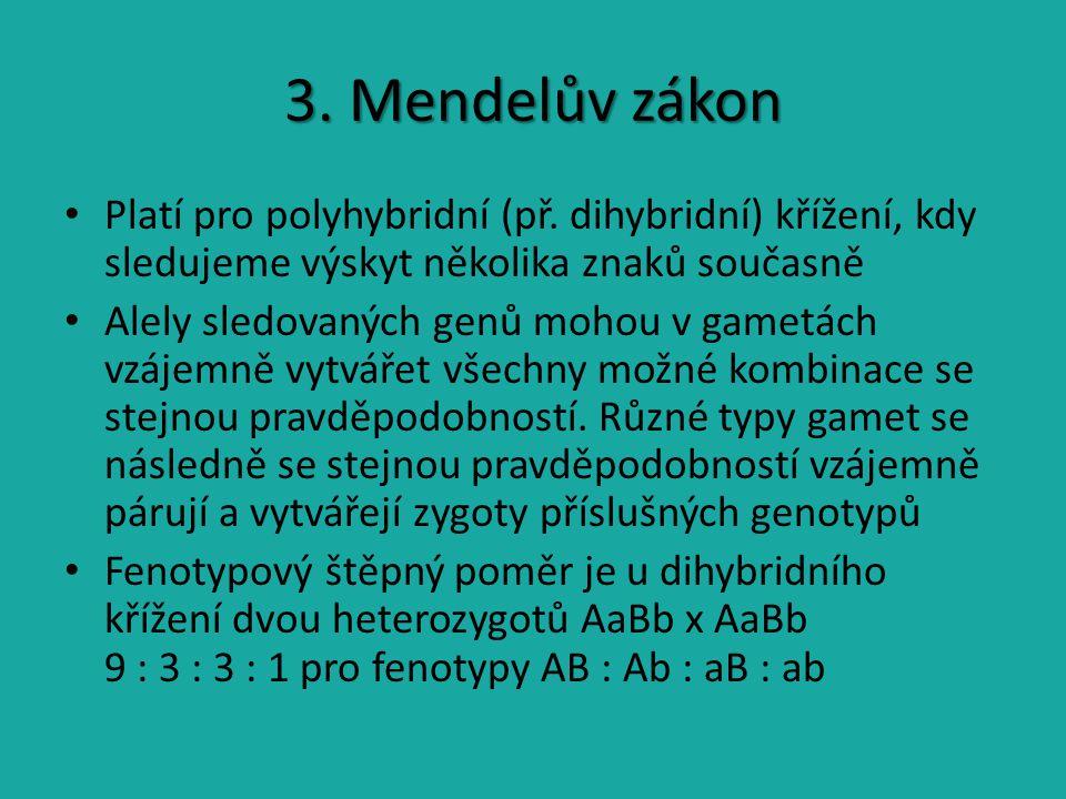 3. Mendelův zákon Platí pro polyhybridní (př. dihybridní) křížení, kdy sledujeme výskyt několika znaků současně.