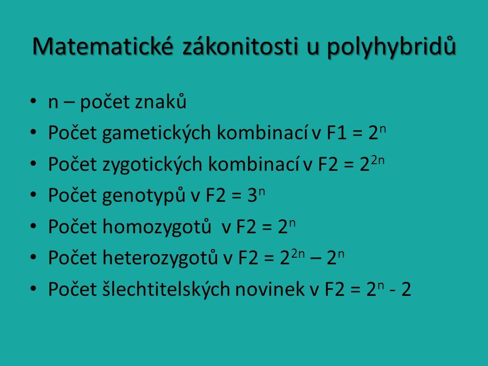 Matematické zákonitosti u polyhybridů